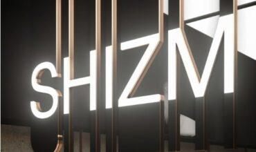 Ликвидация коллекций в SHIZM