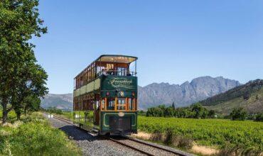 Винный трамвай: экскурсия по городу с дегустацией напитков