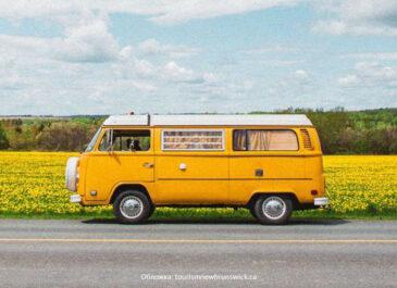 Эко-путешествие в режиме «Ноль отходов»: 5 мест на Урале