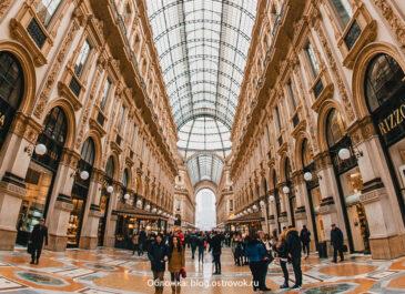 Авторская колонка Анны Мальцевой: разбор шопинга в Милане на примере клиента