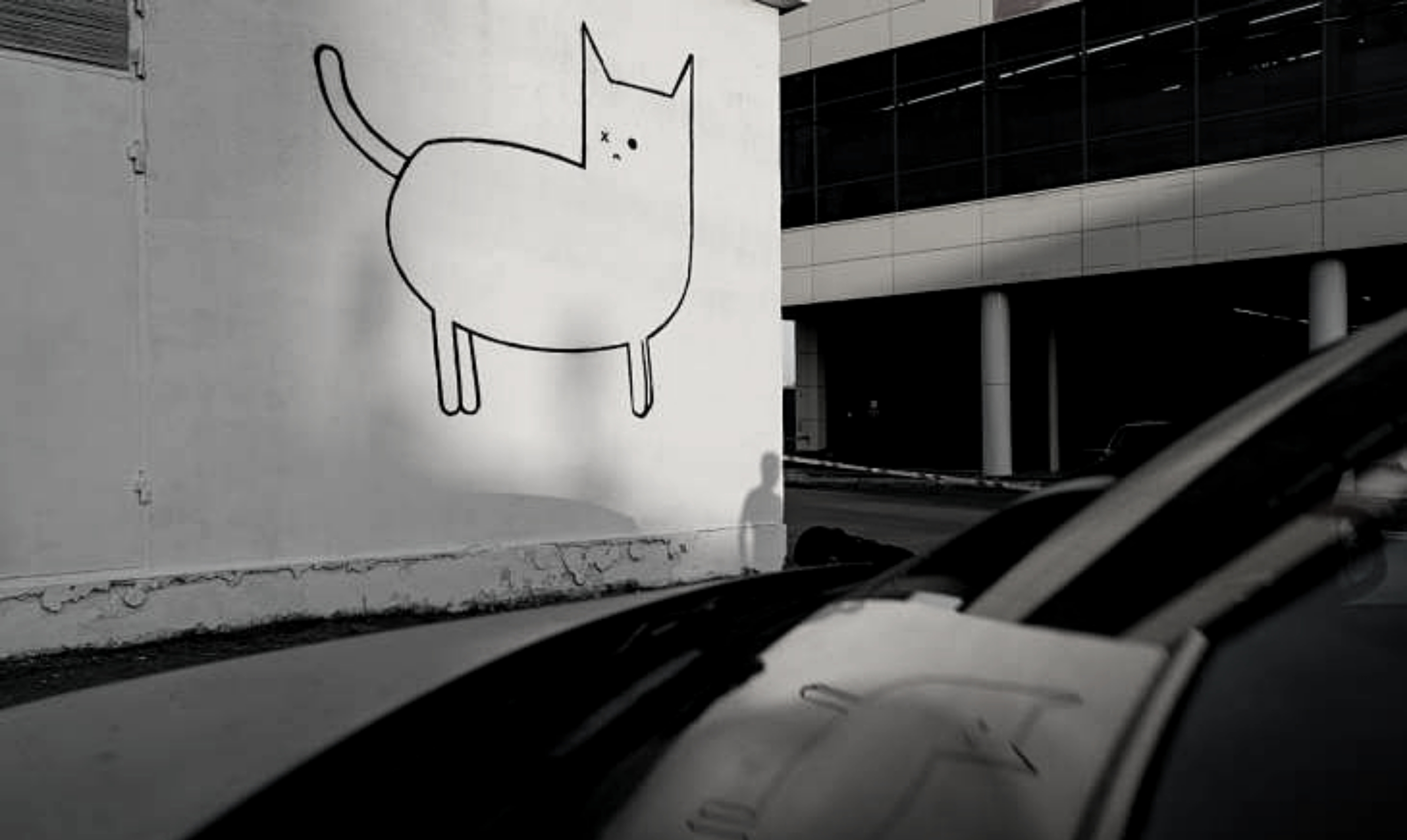 На улицах города появился арт-объект с котом в минималистичном стиле